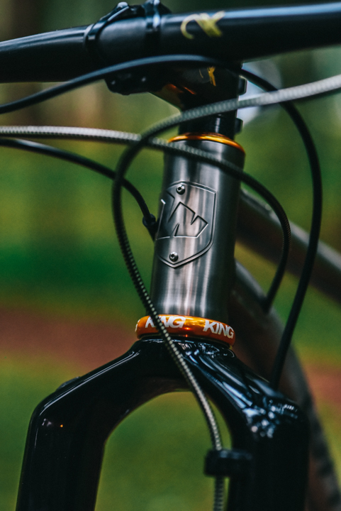 wittson titanium head badge and gold chris king head set