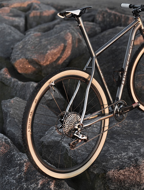 Titanium 29er Bicycle With Sram Xx1 Groupset Wittson
