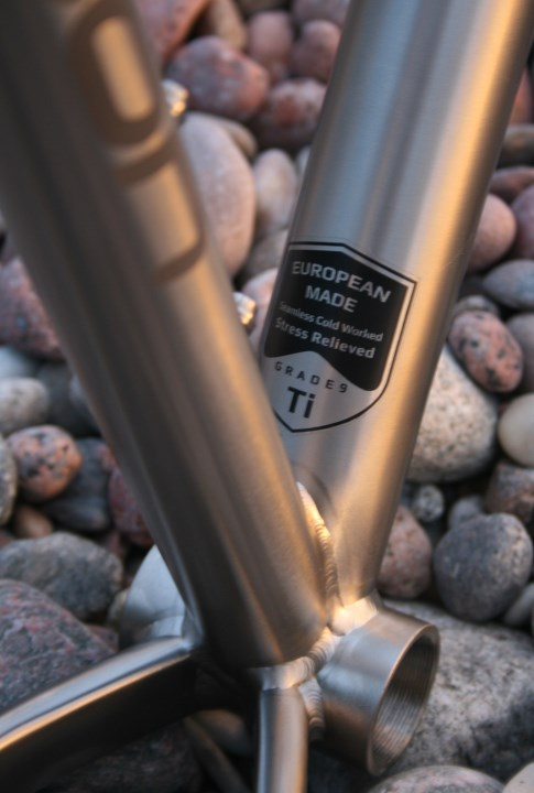 Wittson Titanium 29er Frame with Niner Fork and DT Swiss 142x12mm
